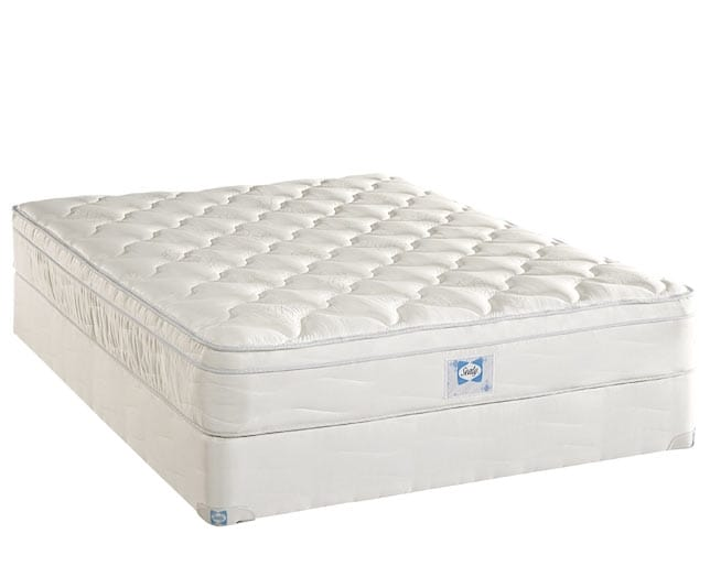 [Luxury Series Plush Euro Top King Mattress/Boxspring Set]