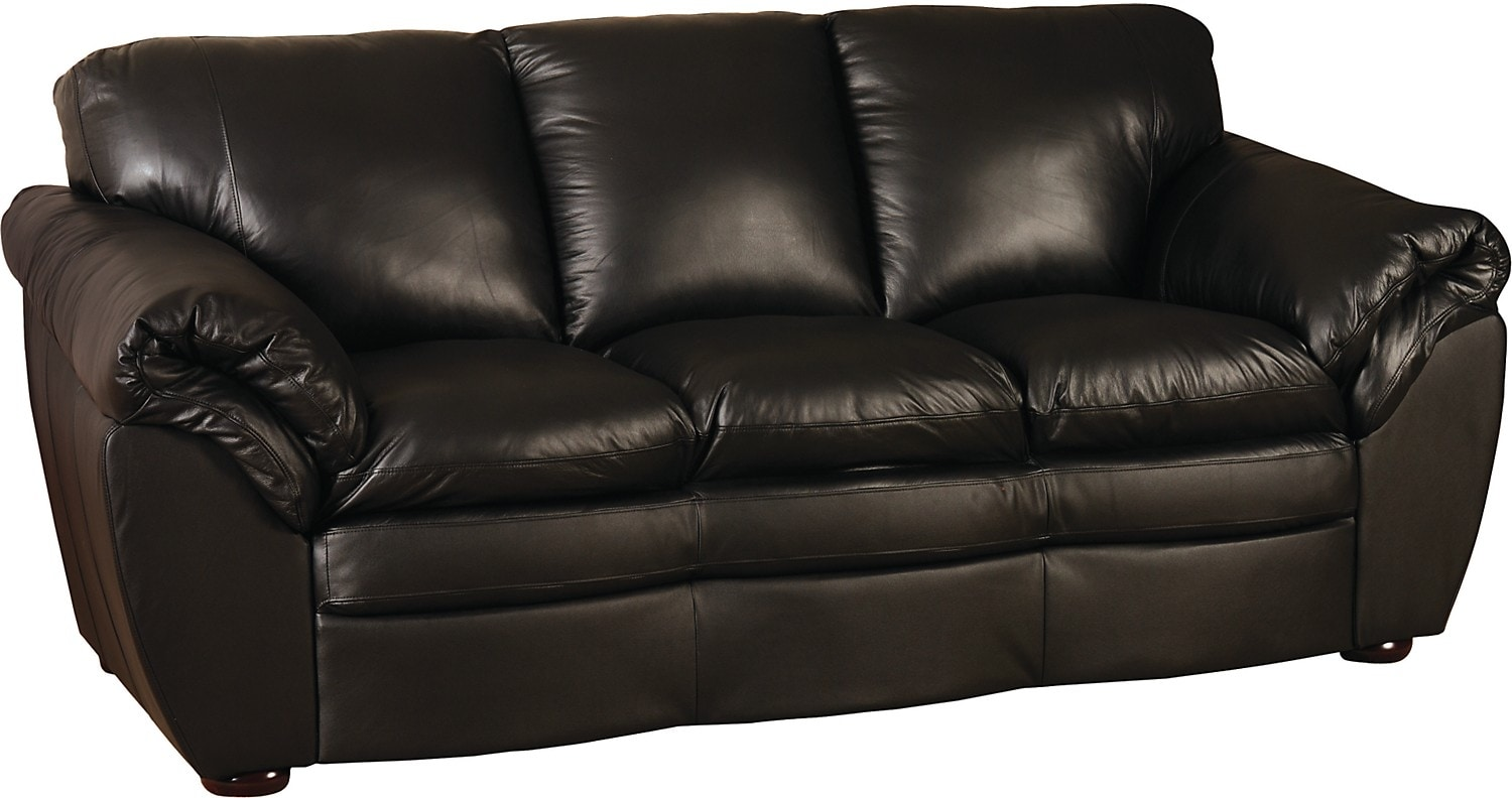 Living Room Furniture - Black 100% Genuine Leather Full-Size Sofabed