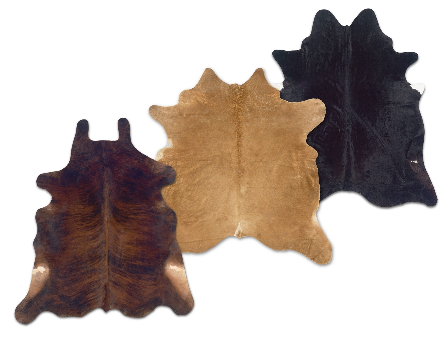 [The Cowhide Collection]