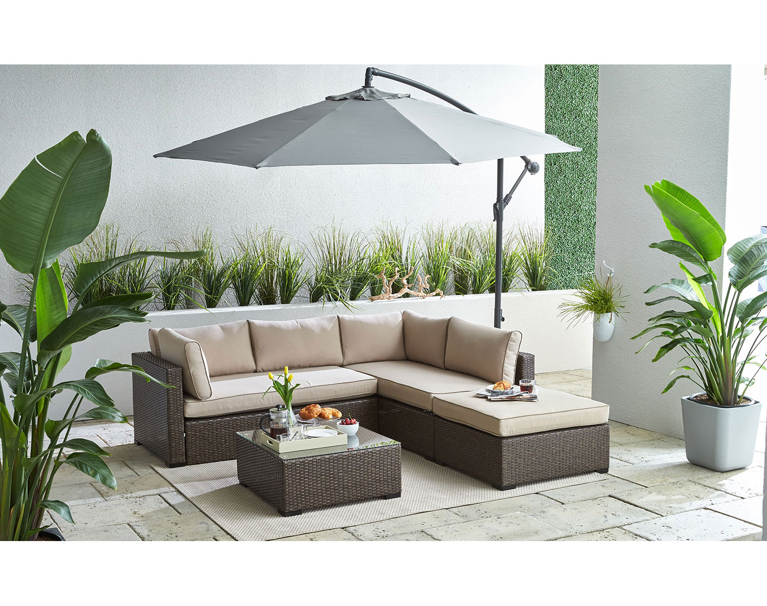 The Caribe Collection