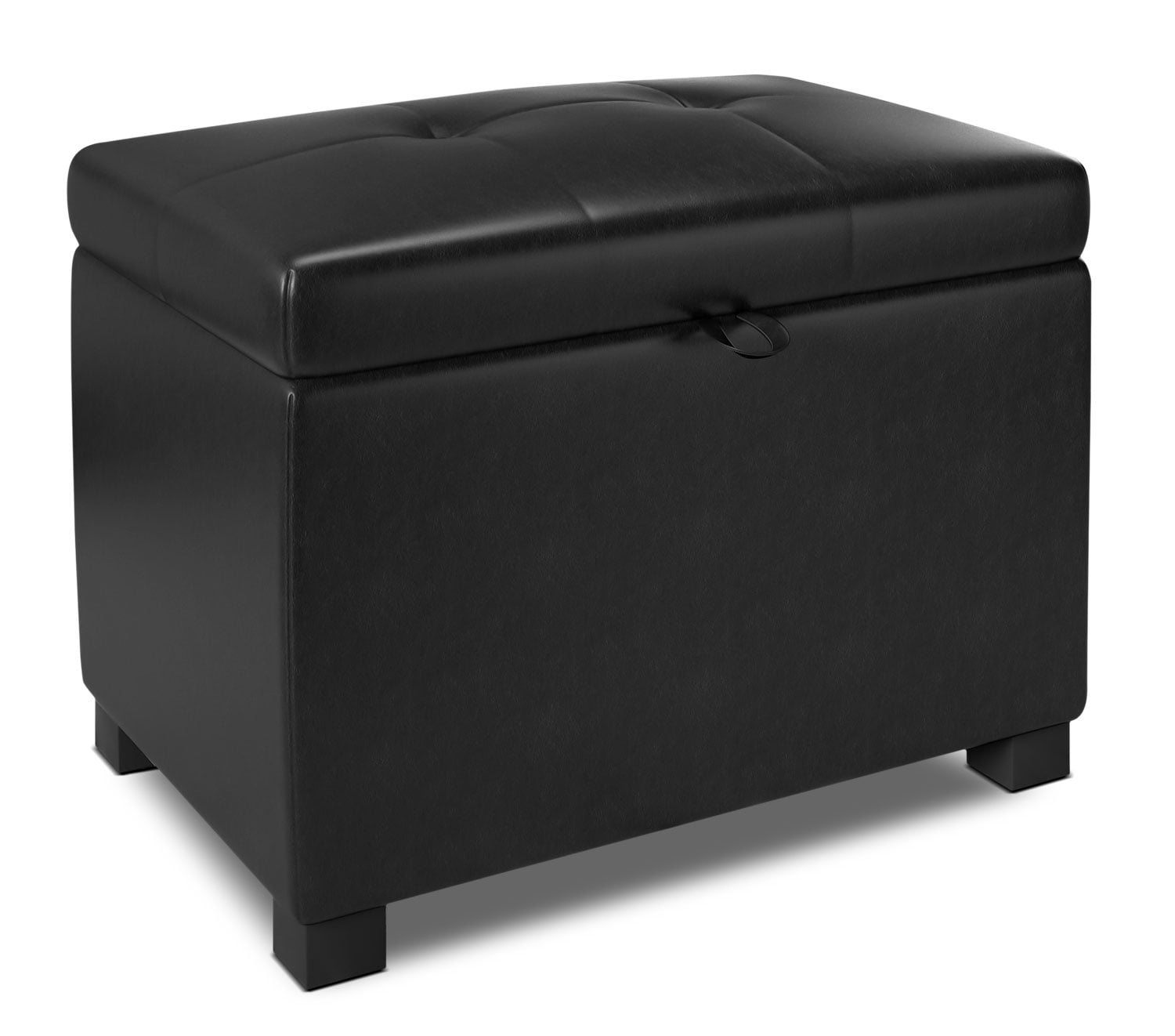 "Accent and Occasional Furniture - Isabela 23"" Storage Ottoman"