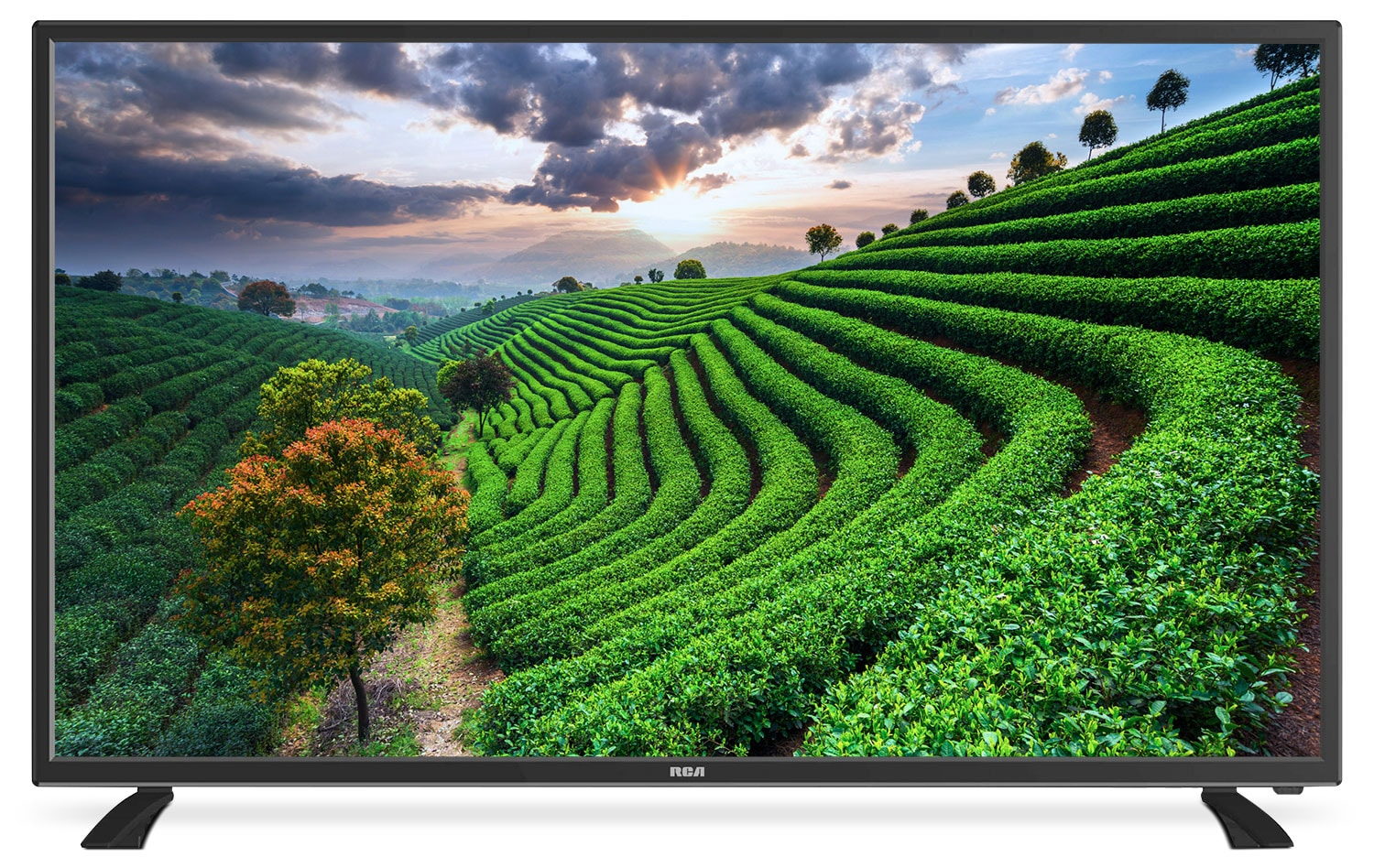 "Televisions - RCA 49"" Full HD LED Television"