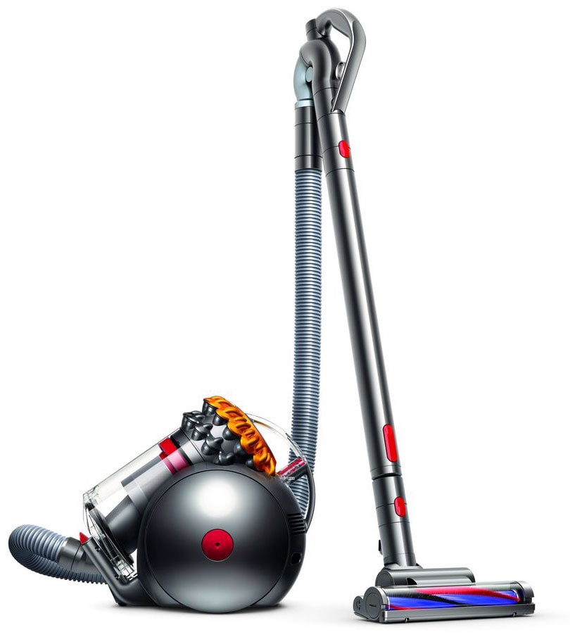 Clean-Up - Dyson Big Ball™ Multi-Floor