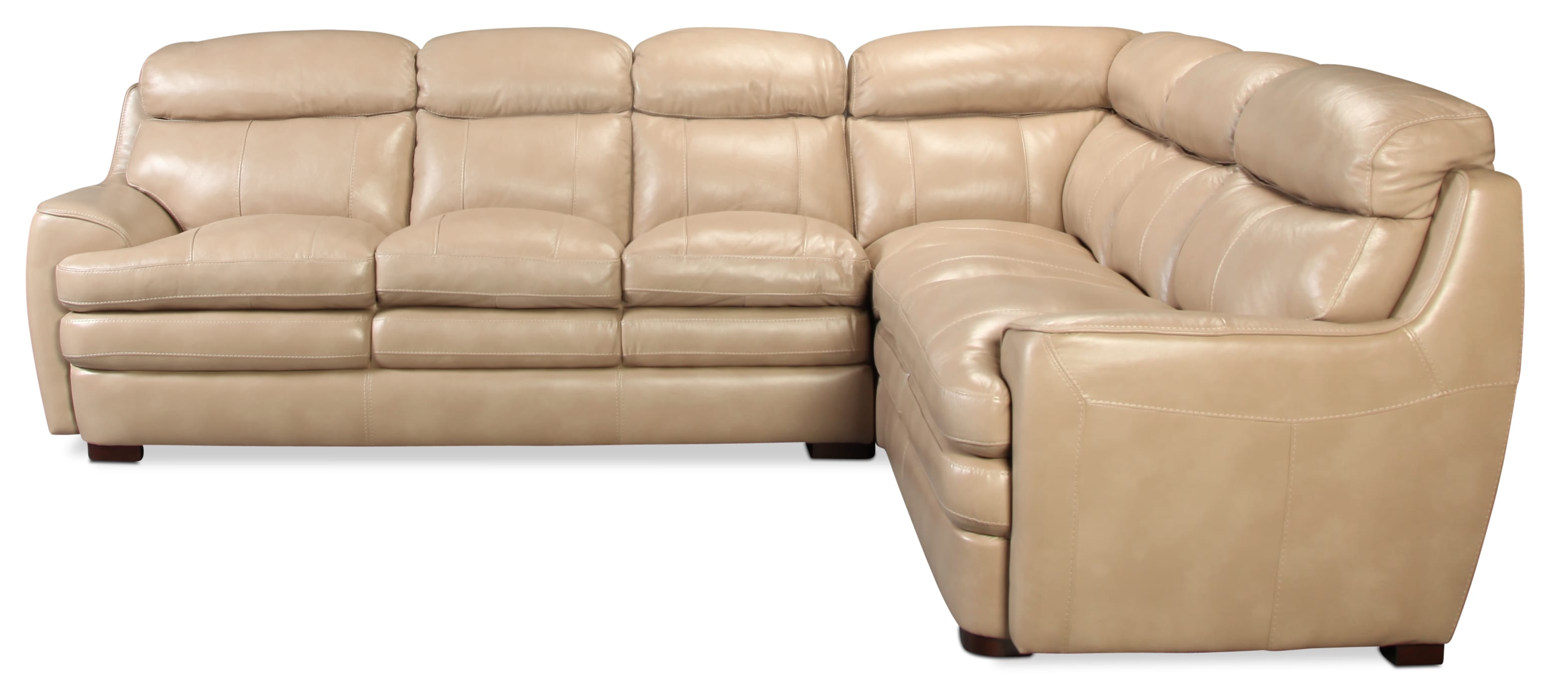 Genola 2pc Leather Sectional
