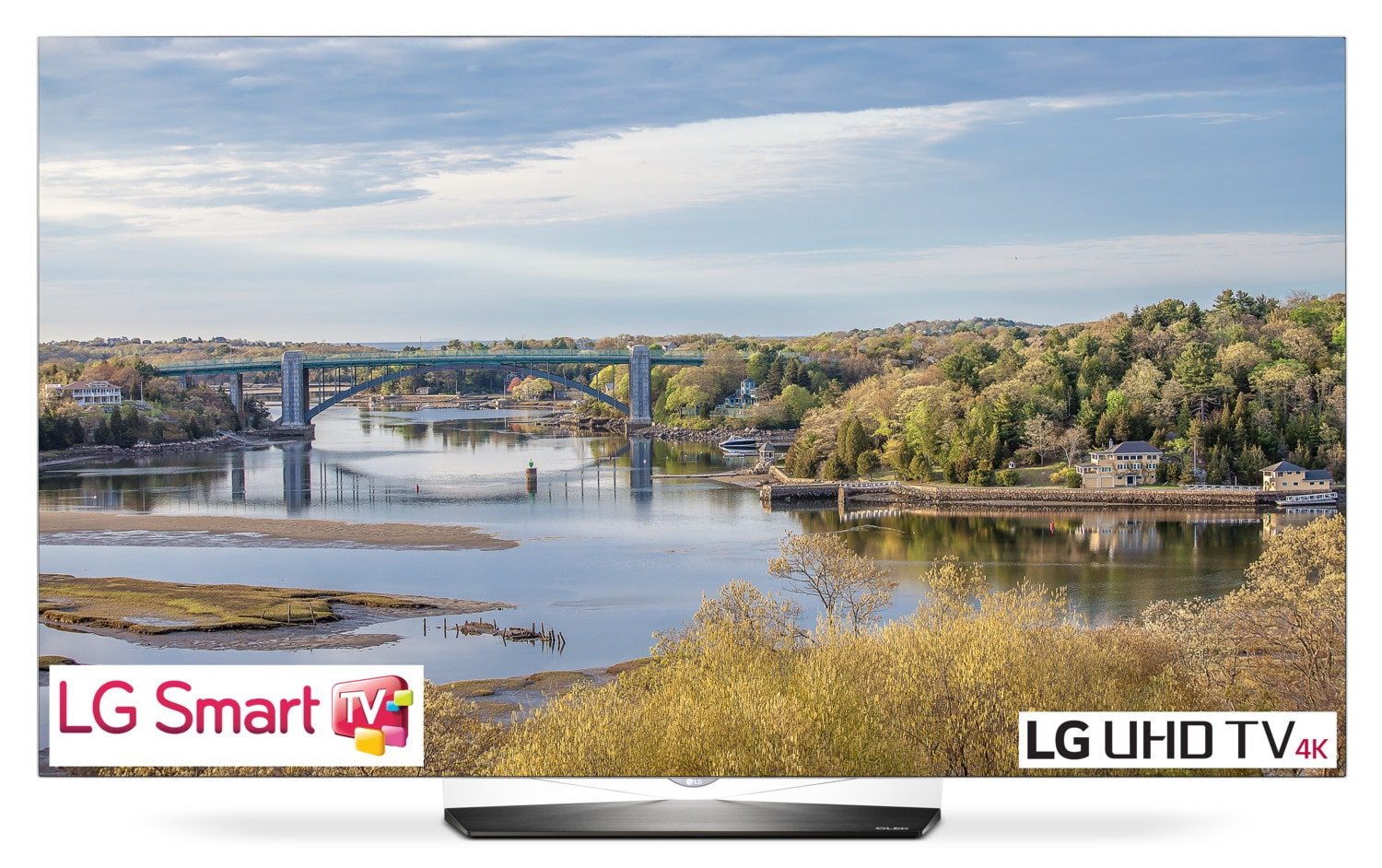 "LG 55"" 4K UHD Smart OLED TV - 55B6"