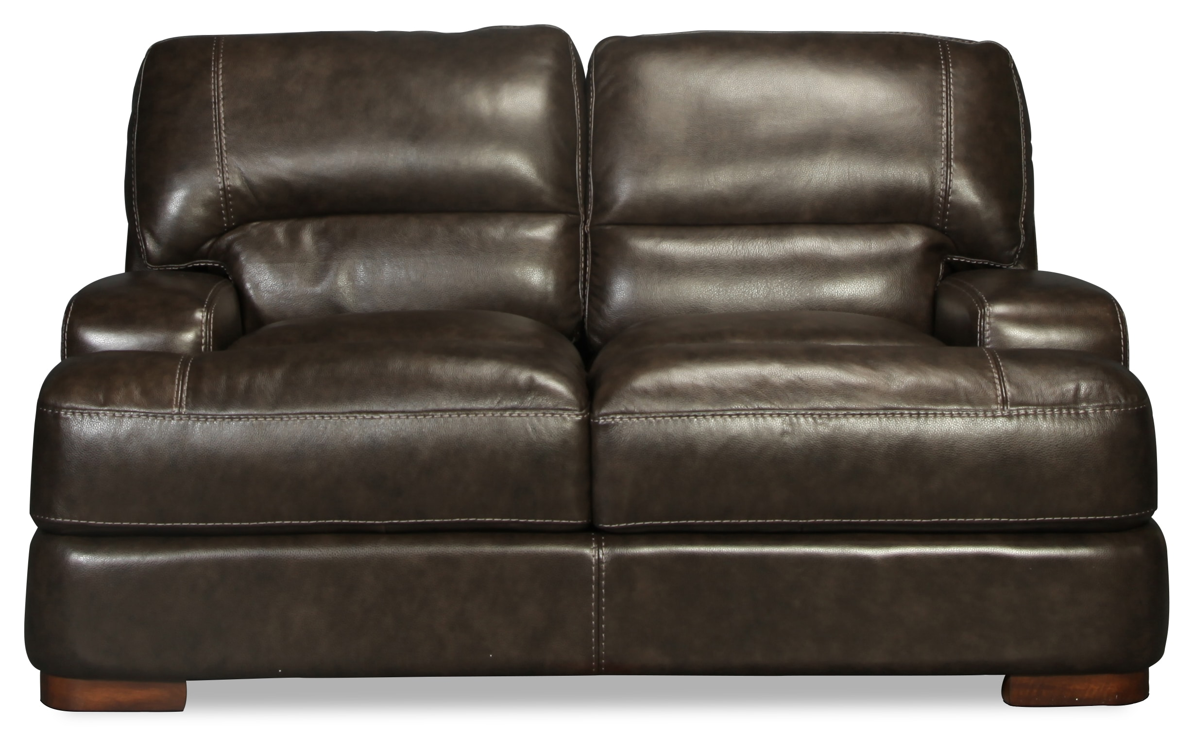 Living Room Furniture - Salina Leather Loveseat