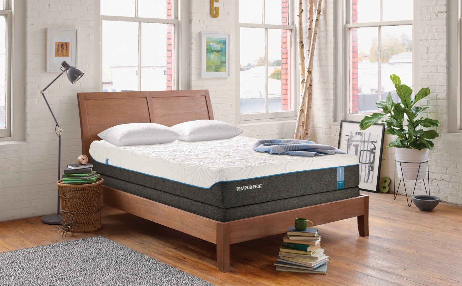 The Tempur-Pedic Appeal 2.0 Cushion Firm Collection