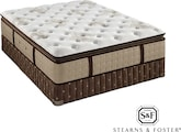 Mattresses and Bedding-The Maddison-Leigh Cushion Firm EPT Collection-Maddison-Leigh Cushion Firm EPT Queen Mattress/Foundation Set